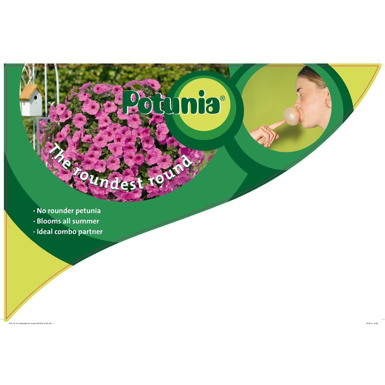 CC-Banner Potunia 50x35 cm GB