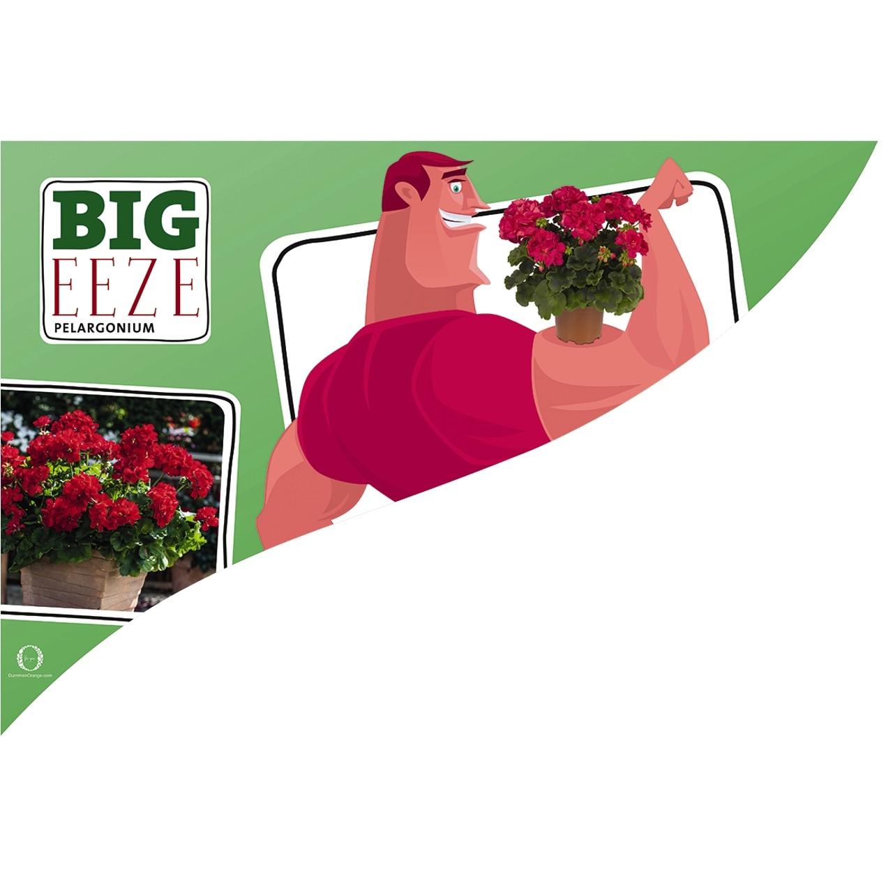 CC-Banner Big Eeze 50x35 cm