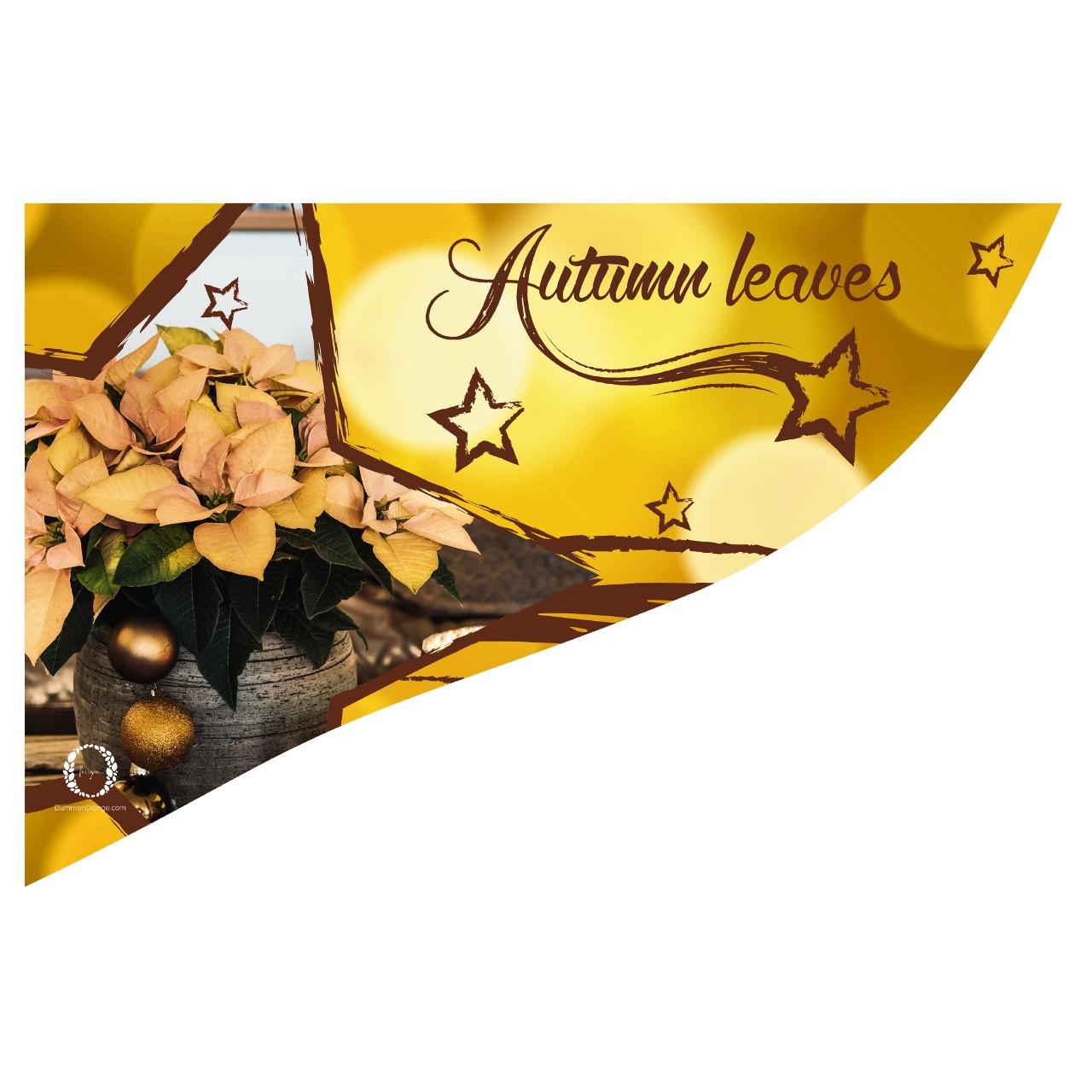 CC-Banner Autumn Leaves 50x35 cm